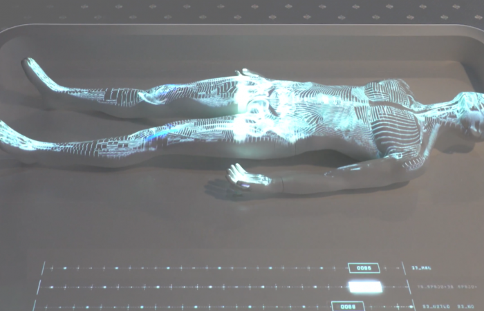 VIDEO MAPPING BODY ANATOMY ANATOMIA CORPO